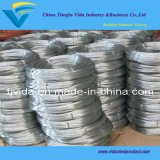 Hot Dipped Galvanized Wire with Excellent Quality