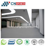 Seamless Indoor Sports Flooring Surface for Gymnasium, Fitness Centre, Dancing Room