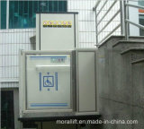 Wheelchair Man Lift for Disabled