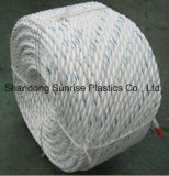 PP Danline Mooring Rope Equal to Dsr Quality
