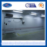 Frozen Ice Cream Storage Cold Room, Walkin Freezer