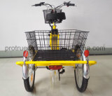 Three Wheel Electric Bike with Cargo