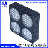 Glebe LED Plant Grow Light 150W Full Spectrum Lamp with Anti-Fire Casing for Greenhouse Hydroponic Plant Growth