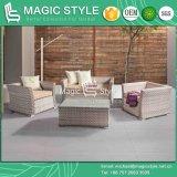 New Design Wicker Sofa Set Rattan Sofa with Cushion (Magic Style)