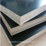 Good Quality 18mm Construction Industrial Plywood with Competitive Price