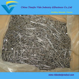 Factory on Hot Sale Manufacturer Common Wire Iron Nail Common Nail
