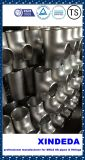 Bw Smls Duplex/Stainless Steel Pipe Fittings Tee