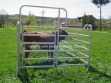 Heavy Duty Galvanized Rail Pastoral Industry Livestock Cattle Panel/5 Bar Oval Rail Cattle Corral Panels/Cattle Fencing Panel
