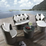 Popular Design modern Furniture Sofa Hotel Furniture Garden Sofa Bed (YT459)