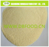 Garlic Granule 40-60mesh G1 with Brc Certificate