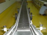 New Type Stainless Steel Chain Conveyor