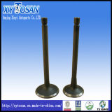 Engine Valve for Isuzu 4ja1/ 4hf1/ 6bd1/ 4zd1 (ALL MODELS)