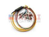 FC/Upc Sm 12 Core Fiber Optic Ribbon Pigtail
