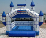 Inflatable Castle, Inflatable Bouncer, Inflatable Toy (XRY3-222)