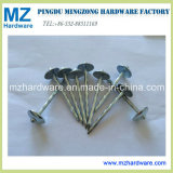 Twist Screw Smooth Shank Umbrella Head Roofing Nail