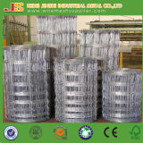 Knot Field Fence Mesh for Animals, Fencing Wire, Cattle Fence