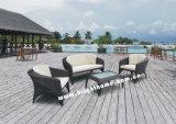 Garden Furniture / Patio Furniture / Outdoor Stylish Furniture (BW-420)