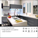 UV Grey Colour Kitchen Cabinet (ZH0987)