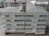 Grey Granite Panel for Outdoor Walls (CS089)