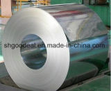 Galvanized Steel Coils Gl Gi for Building Material From Shandong Yehui