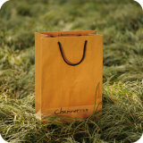 Luxury Kraft Paper Shopping Bag with Rope Handle