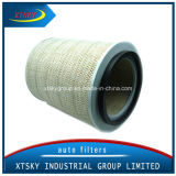 Xtsky Auto Part High Quality Auto Air Filter (OE: 395773)