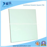 "Blank Ceramic 6""X 6"" Luminous Tiles"