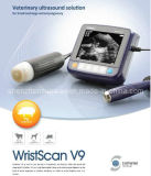Veterinary Ultrasound Wristscan V9 for Pregnancy Solution