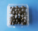 125g Clear Plastic Fruit Packaging Blueberry Packaging