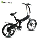 250W 350W Electric Bike Folding Mag Wheel Tire Bicicleta Electrica