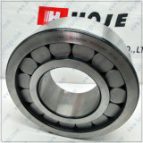 SL Series Full Complement Cylindrical Roller Bearing (SL192334)