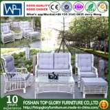 Garden Outdoor Furniture Sofa Set PE Rattan Sofa (TG-014)