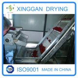 DW Multilayer Belt Dryer