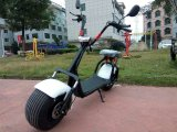 Electric Bicycle with F/R Suspension 2 Seat and Rear Light