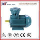 Yb3 Series AC Asynchronous 45kw Explosion Proof Motor