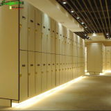Modern and Contemporary Compact Laminate Locker