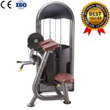 Commercial Gym Equipment Body Building Gymnastic Equipment Biceps Curl