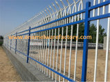 Enamel Wire Mesh Fence/ Wall Fence/ Fence