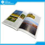Cheap Custom Wholesale Service Offset Paperback Book Printing