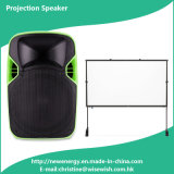 Popular Professional Power Amplifier with LED Projector and Screen