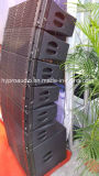 DS210 Dual 10 Inch Two-Way Audio Professional Line Array Speaker 700W