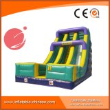 Latest Inflatable Giant Slide (T4-132) for Kids