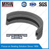 Gd1000k Tye Hydraulic Cylinder Piston Sliding Seal