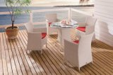 Outdoor Wicker Patio Home Hotel Office Restaurant Auckland Garden Dining Table and Chair (J375W)