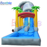 Giant Inflatable Water Slides, Inflatable Pool Slide