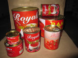 Canned Tomato Paste Brix 22/24, 28/30.