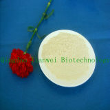 90% Isolated Soy Protein (Gelification) (TW900)