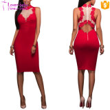 Bandage Bodycon Dress Back Zipper Sexy MIDI Dress L36166