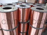 Speaker Cables-Copper Clad Aluminum Wire