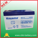 12V 7ah Lead Acid AGM Battery for Emergency Lighting, UPS, Surge Protector